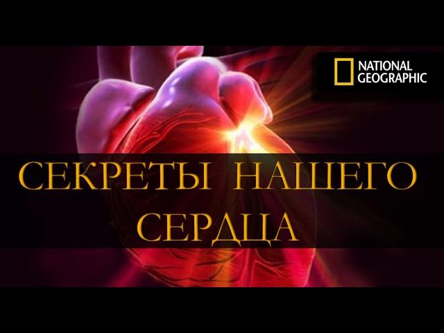 Секреты нашего сердца. National Geographic (HD)