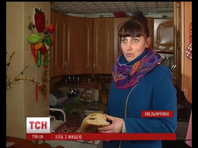 Багатодітна мати з Хмельниччини ледь не нагодувала п'ятьох дітей хлібом з мишею