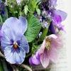 Доставка цветов и подарков Москва и МО