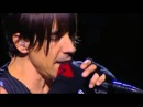 Red Hot Chili Peppers - Don't Forget Me live at Chorzów, Poland 2007