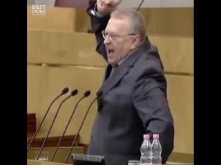 Если поставить Жириновского на реверс, получится немецкий диктатор