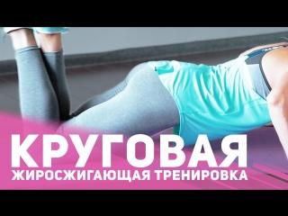 Круговая жиросжигающая тренировка Фитнес Подруга