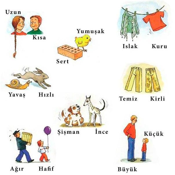 большую учим турецкий с картинками широкую
