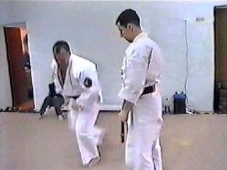 Bushinkan Jujutsu-перехват инициативы в джиу джитсу
