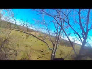 Friday Freakout: Skydiver Saved By AAD, Lands In Trees