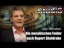 Die morphischen Felder nach Rupert Sheldrake