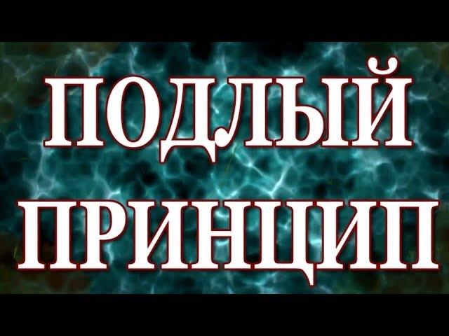 6. Вадим Зеланд - Подлый принцип.