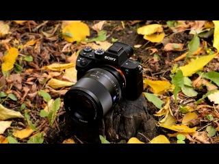 Обзор Sony α7R II — полнокадровой беззеркальной фотокамеры