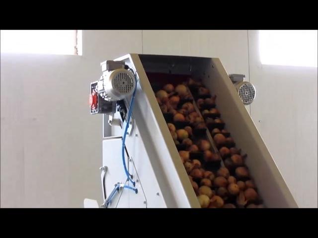 Весоупаковщик и сетко-зашивочная машина WPM-50/RM-30