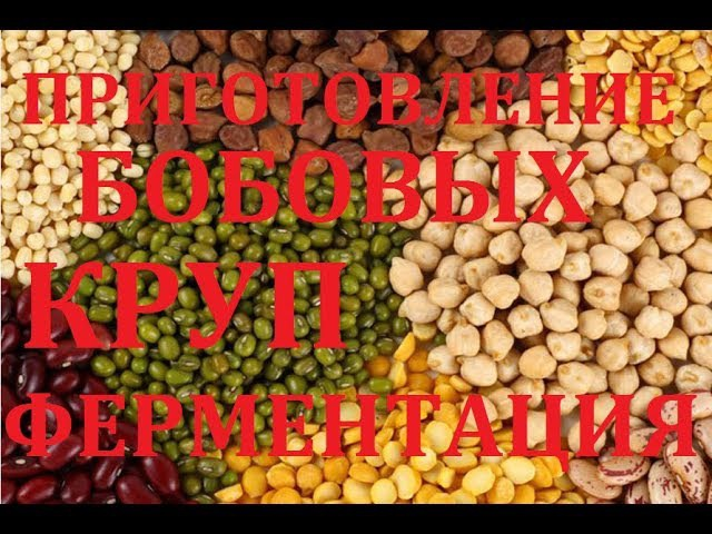 Приготовление бобовых и круп Фитиновая кислота и фитаза Устранение игибиторов Павел Ян
