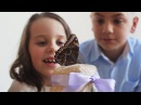 Обзор Домашней Фермы бабочек бабочкария от Флай Флай