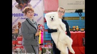 Alkhabor Almira Feruz - r. ЛУЧШИЙ БЕБИ ВЫСТАВКИ !!! (Пенза, 23 апреля 2018)