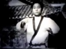 Hwang Kee Soo Bak Do Moo Duk Kwan Tang Soo Do
