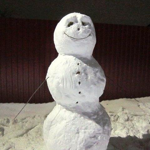 Принцип Снеговика. Бизнес-обучение.