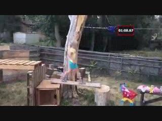 Полоса препятствий - Проект  Дача