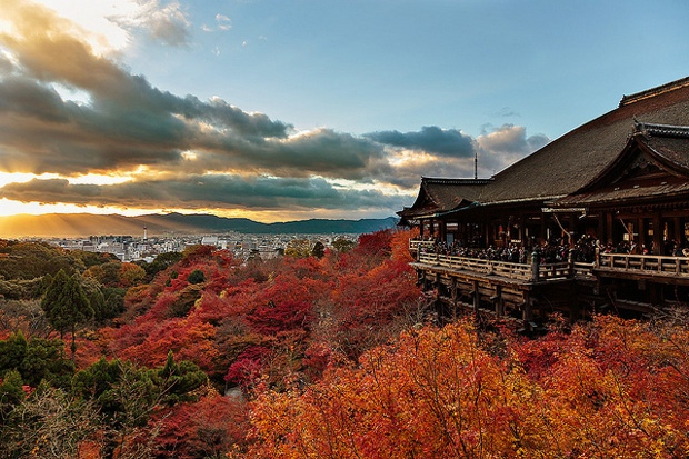 Осень в Японии. Самые красивые места, изображение №1
