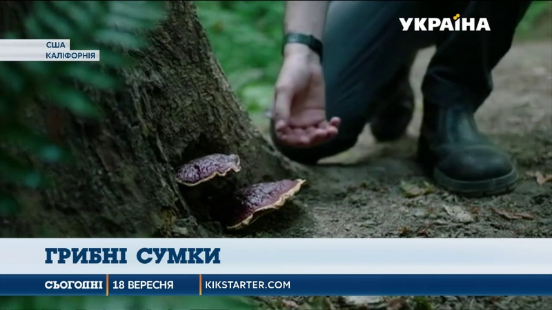 У Сполучених Штатах почали шити сумки із грибів