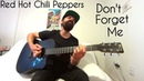 Don't Forget Me - Red Hot Chili Peppers [Acoustic Cover by Joel Goguen]