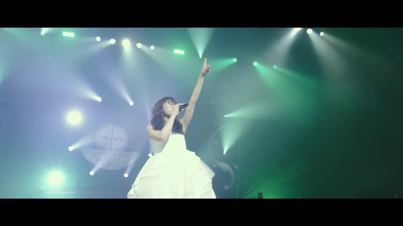 Aimer - ONE (Aimer Hall Tour 18/19 soleil et pluie)