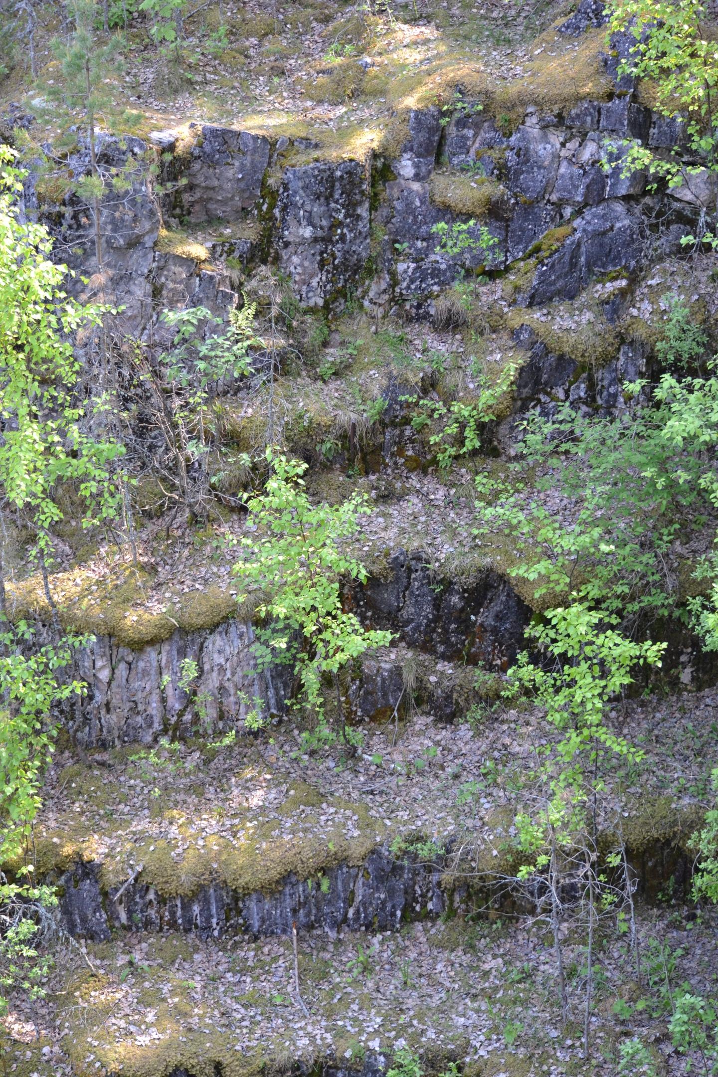 Тивдийские мраморные каменоломни. Автор Борисов И. В., изображение №3