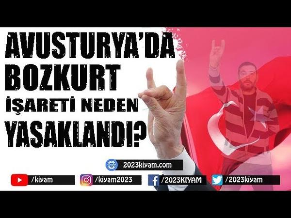 Avusturya'da Bozkurt İşareti Neden Yasaklandı?