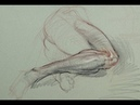 ANATOMY FOR ARTISTS Living Anatomy-Lower leg and thigh with pelvis PART 1