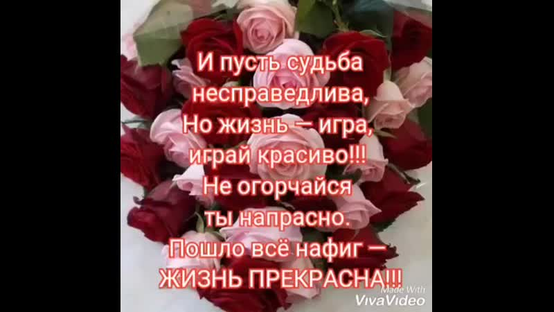 59305230_307100806628244_8457194049281982464_n.mp4