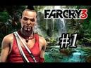 FAR CRY 3 Часть 1 Побег Выживание прохождение без комментариев PC 4K 60 FPS