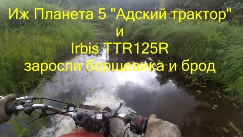 Иж Планета 5 Адский трактор и Irbis TTR125R заросли борщевика и брод
