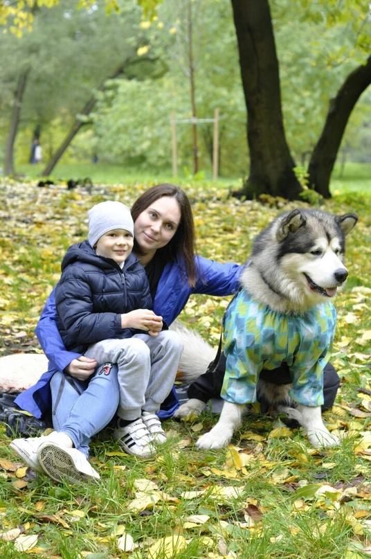 Наталья вавилова фото сегодняшних дней взятке доценту