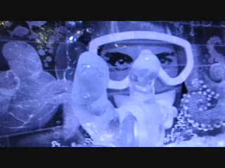 Ледяные скульптуры. Большой барьерный риф и обзорно по кругу