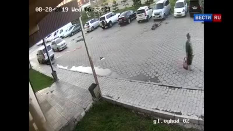 Киргизский милиционер спрятал хулиганов, до полусмерти избивших прохожих - Росси