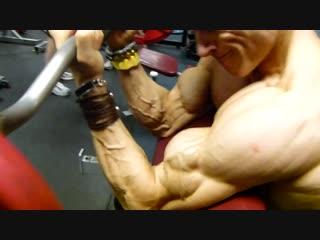 Helmut strebl - biceps
