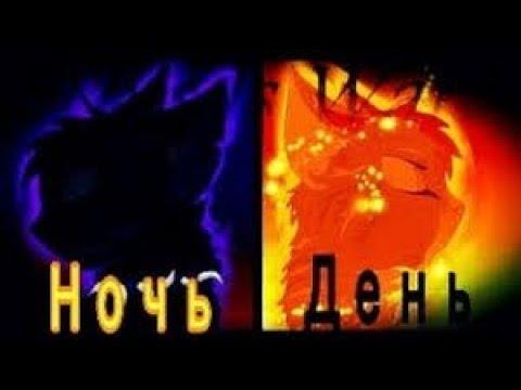 День ночь Коты воители Бич и Огнезвёзд