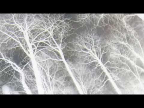 MIERNØ - BLACK COAT (prod. Dj Yung Vamp) (OFFICIAL VIDEO)