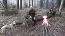 Охота с гончей на зайца в чернотроп