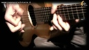 The Chameleon acoustic fingerstyle played by Tonino Tomeo