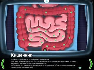 Кишечник. Строение кишечника - познавательный мультфильм для детей