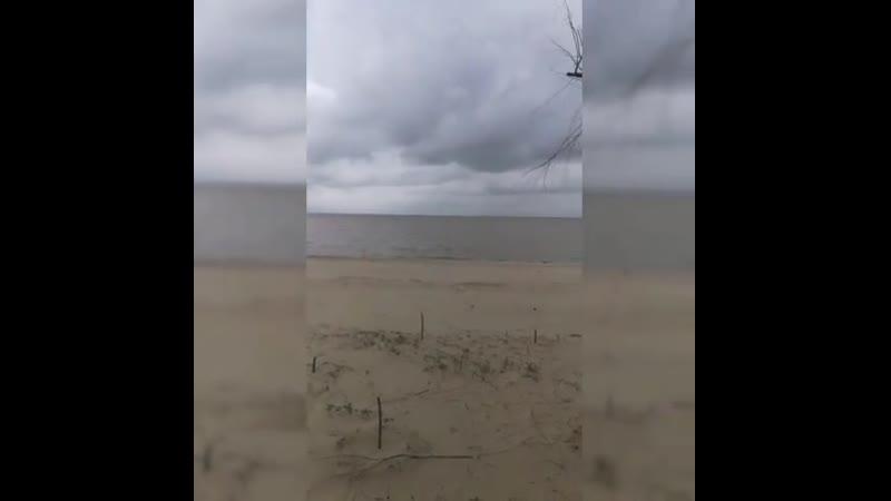 Море, база отдыха Бриз