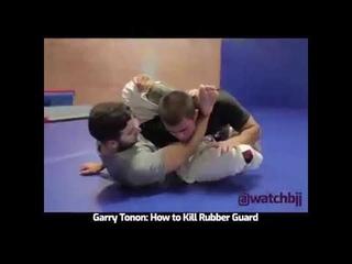 Garry Tonon: How to Kill Rubber Guard GRAPPLING/JIU JITSU