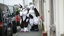 Guy With Rabbit Obsession Dresses Up As Giant Bunny