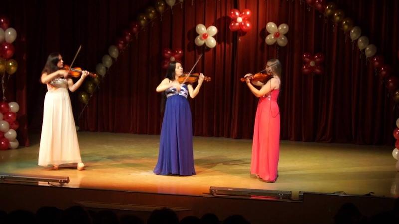 Трио Violini Venus или Шизгара