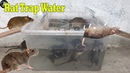 Rat Trap Water 🐀 7 Mice in trapped 🐭 Mouse Rat trap 👍 Easy make a Best Rat Trap Handmade