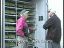 Fodder solutions feed for all types of livestock
