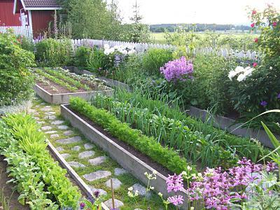 Без весов (или мерки) определяем вес (или объем) удобрений и т.п. При работе с удобрениями и другими препаратами садоводам часто приходится пользоваться ведрами, стаканами, спичечными коробками,