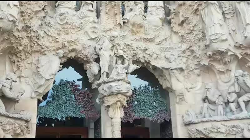 Сограда фамилия