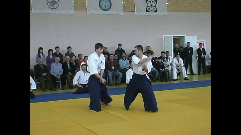 Nishio Aikido demonstrations