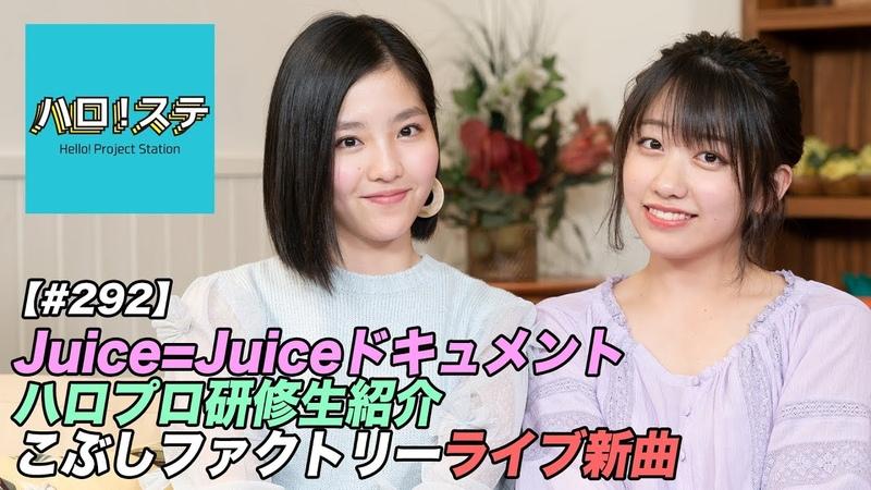 ハロ!ステ 292 Juice=Juiceツアードキュメント、こぶしファクトリーLIVE!、ハ 12