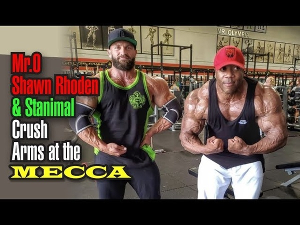 MR O SHAWN RHODEN STANIMAL CRUSH ARMS TALK ABOUT THE MINDSET NEEDED TO BE A CHAMPION