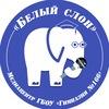 «БЕЛЫЙ СЛОН» | Медиацентр ГБОУ гимназия №166